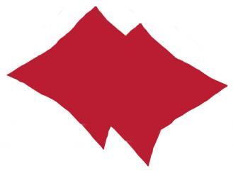 Kissenbezüge Frottee bordeaux 40 x 40 cm 1x2 Stück