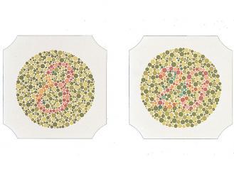 Farbtafeln nach Ishihara, Buch mit 24 Tafeln 1x1 Stück
